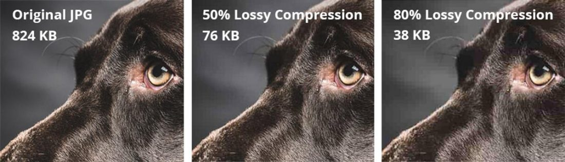 A visual representation of lossy compression. (From: cdn.geckoandfly.com)